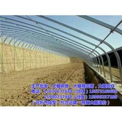 保定钢管大棚|温室钢管大棚|【大棚加工】(