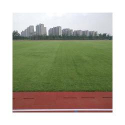 足球场建设价格量大从优_茂名足球场建设一