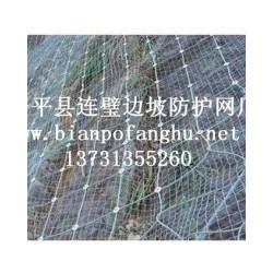 热门边坡防护网上哪买 |辽宁边坡防护网