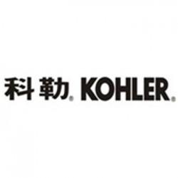 西湖区KOHLER科勒马桶下水缓慢愁死人-杭州