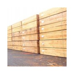 供应木方——大量出售质优价廉的鑫凯威木方