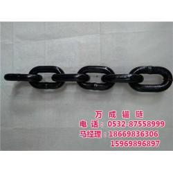 链条|青岛万成锚链(在线咨询)|不锈钢工业链