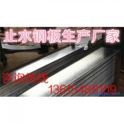 衡阳钢板止水带制造商