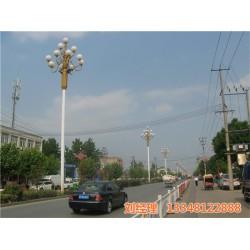 中华灯|天煌照明 路灯厂家|10米中华灯