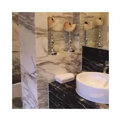 装饰公司 价位合理的洗手盆天造美石材供应