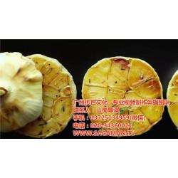 萝岗视频制作费用,广州传世文化,视频制作费