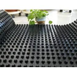 供应呼和浩特排水板价格|内蒙蓄排水板厂家直销