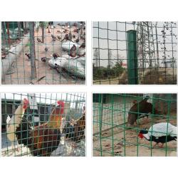 养殖护栏网 广东围栏防护网批发 佛山筛网供应厂家