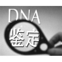 纳泓DNA检测中心