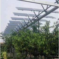 厂家批发晶天光伏组件农光互补并网光伏发电310W单晶太阳能板
