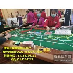 新百胜公司网站电话13114166111