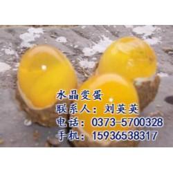 鸭蛋松花蛋,内蒙古鸭蛋松花蛋那里有,豫远蛋