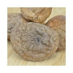 口蘑蘑菇供应商推荐,邯郸市口蘑蘑菇价格