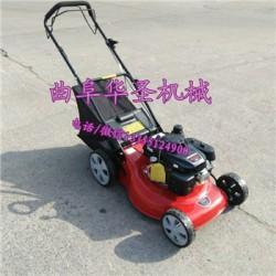 汽油小型草坪机 多功能草坪剪草机