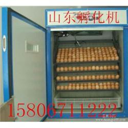 井研县鸡蛋孵化箱价格