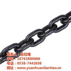 昭通起重链条、泰安市鑫洲机械、起重链条生