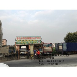 脆鲩鱼批发|鲩鱼| 中山市渔夫水产贸易