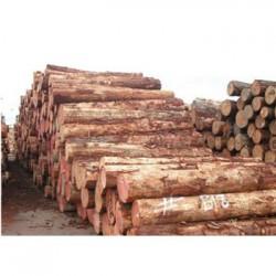 融水收购松木企业一览表
